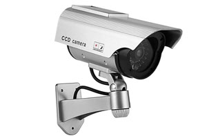 Fake CCTV Cameras Motherwell (ML1)